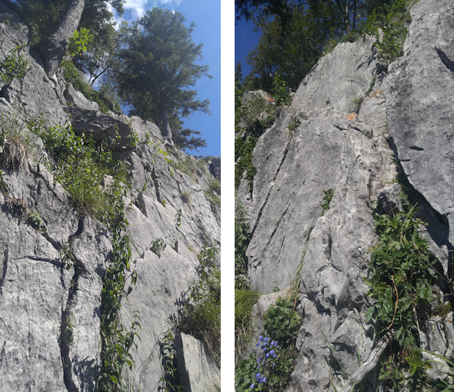 diese Felswand muss auf dem Ostgrat überklettert werden
