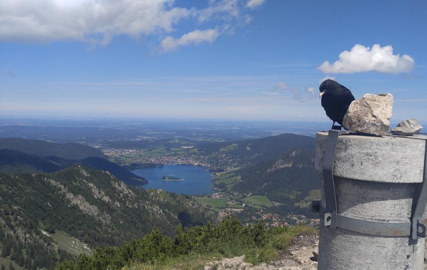 Blick von der Brecherspitzzum Schliersee