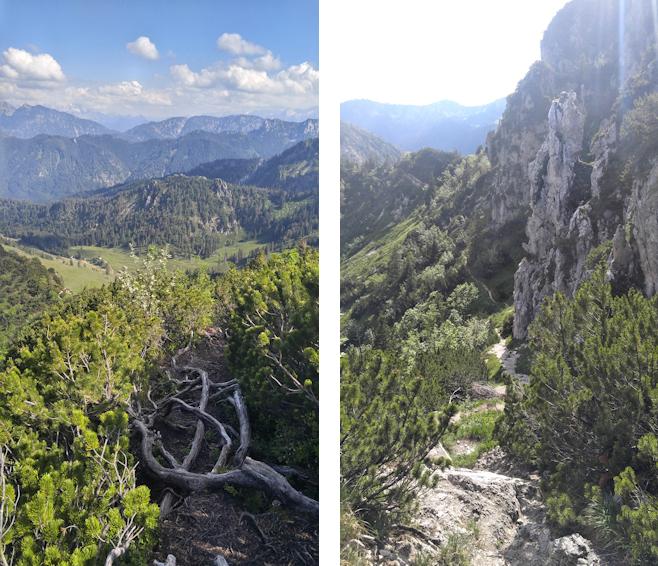 Abstieg vom Hochfelln Richtung Thoraukopf