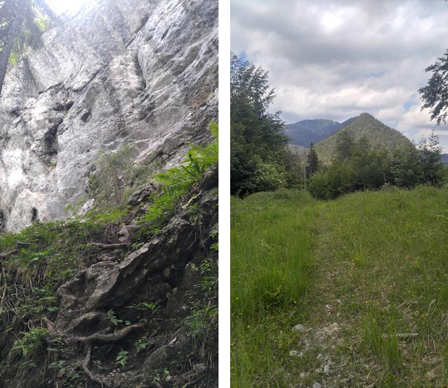 Der Haßlberg auf dem Weg zum Hochfelln