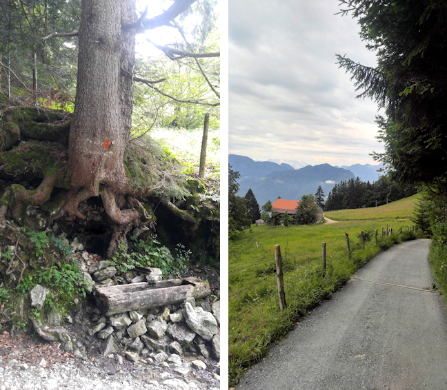 Abstieg vom Hochgernhaus