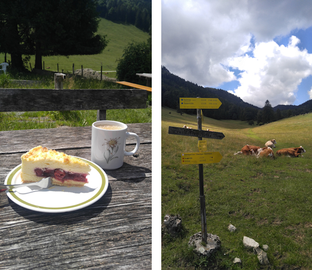 Aufstieg von Aschau zu Hofalm und Laubenstein