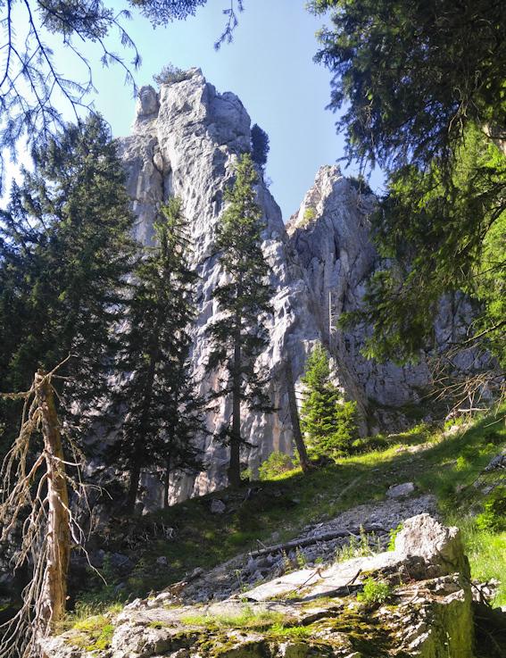 Daffenstein bei Kreuth