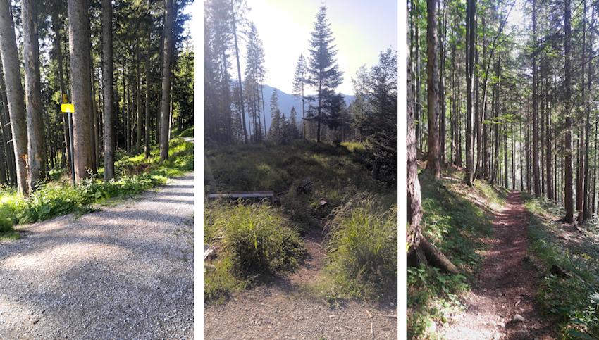 Abstieg nach Kreuth