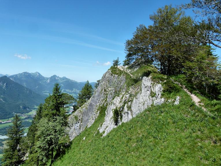 Abstieg vom Heuberg nach Nussdorf