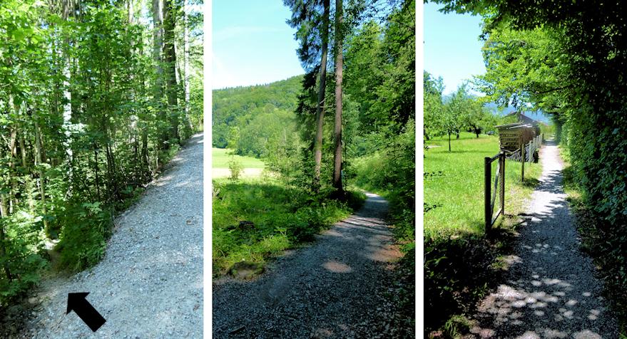 Abstieg vom Heuberg nach Nußdorf