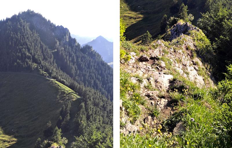 Abstieg vom Karkopf Richtung Feichteck